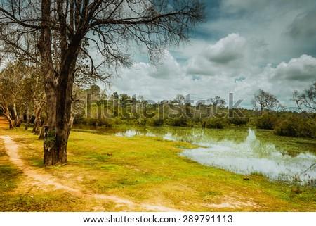 Naturally Scenery,Angkor , Siem reap,Cambodia, - stock photo