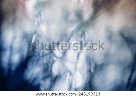 Nature abstract blur with branches and light in blue tones. - stock photo
