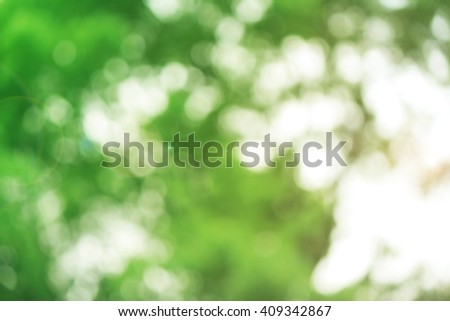 Nature abstract bokeh blurred background. give life air Tree growth hot summer future outdoor earth backdrop green natural room heaven blur sustainability Mineral Good eyesight  World Environment Day - stock photo