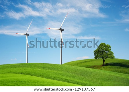 nature and ecology - stock photo