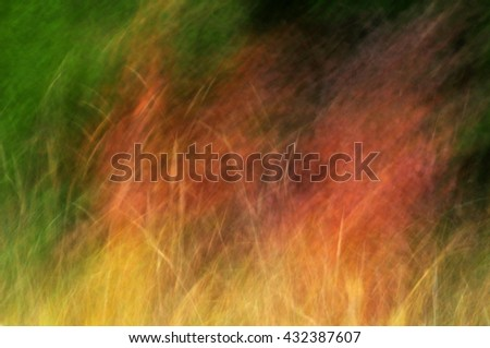 Nature background abstract grass texture - stock photo