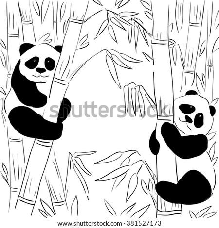 Nature background. Panda. Bamboo. Ecology. Black and white.  - stock photo