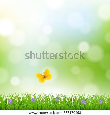 Nature Background With Grass Border And Flowers - stock photo