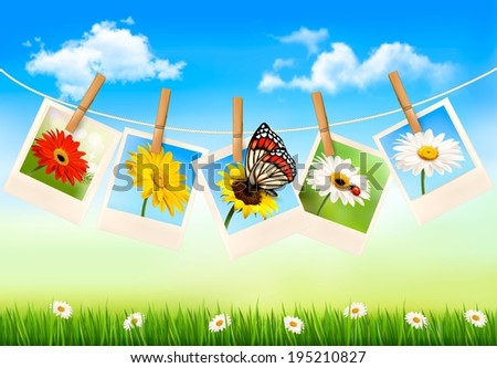 Nature background with photos of flowers and a butterfly. Raster version. - stock photo