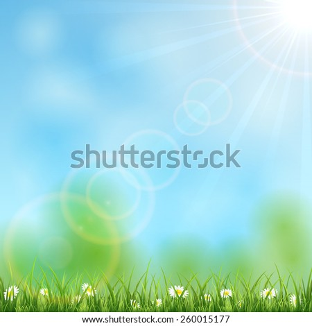 Nature background with Sun, grass and flowers, illustration. - stock photo