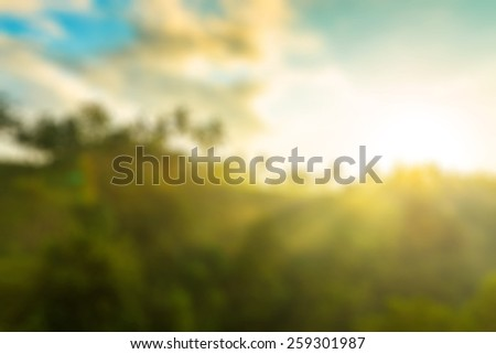 Nature blur background Sun is rising above lush jungle - stock photo