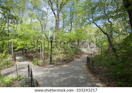 Nature, Garden, Park - stock photo
