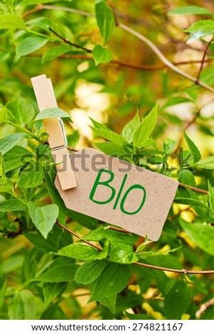 nature greeting card background - bio - stock photo