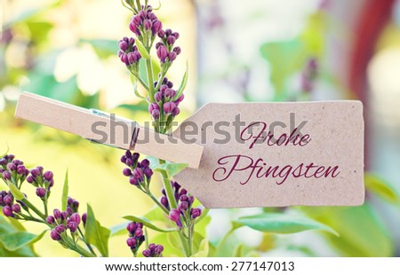 nature greeting card background -german for  happy pentecost - stock photo