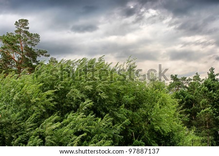 nature landscape with windy stormy weather - stock photo