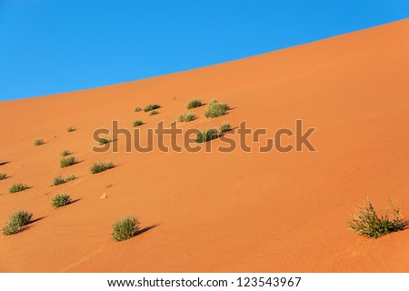 Nature of Namib desert, Namibia, South Africa - stock photo
