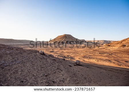 Nature on the sunset near the Bahariya Oasis in the Sahara Desert in Egypt - stock photo