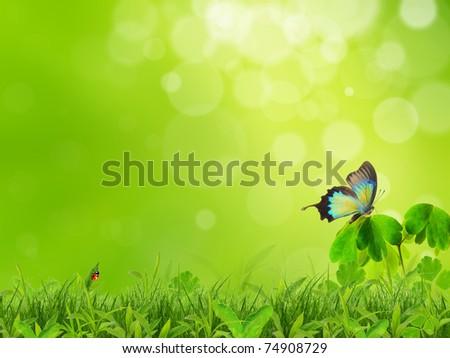 Nature scenery - stock photo