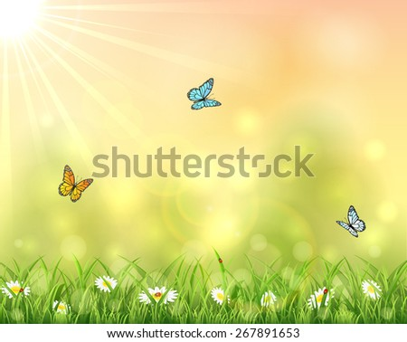 Nature with three butterflies, summer background with Sun and flowers in the grass, illustration. - stock photo