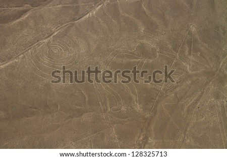 Nazca Lines, Aerial View, Peru, The Monkey - stock photo
