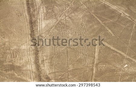 Nazca Lines, Aerial View, Peru, The Spider - stock photo