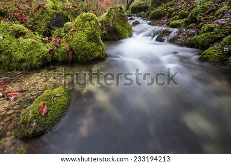 Near the source of the river Kocher in germany / Rapids - stock photo