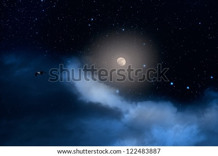 Nearly full moon, shining, on a starry night with some clouds and a passing bird - stock photo