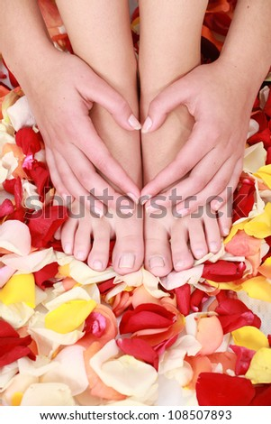 Neat tidy and clean hands and feet which are well manicured in a spa, resting on a bed of rose petals and making a red heart with hands. - stock photo