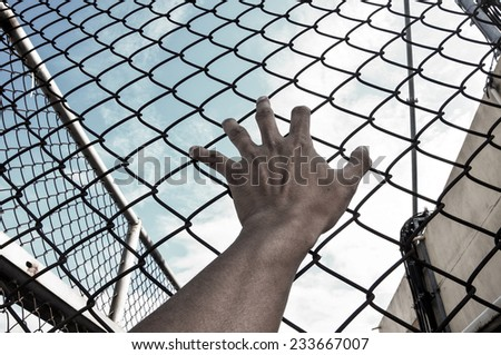 need freedom with hand in jail and bluesky background - stock photo