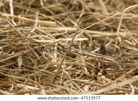 Needle in a haystack close up - stock photo