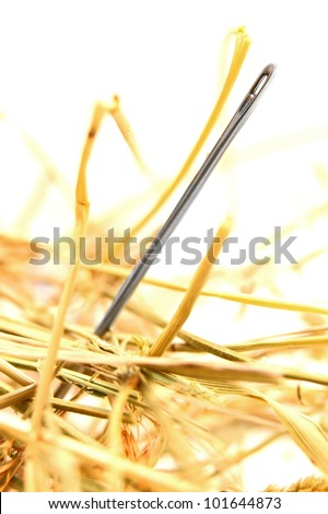 Needle in hay. On a white background. - stock photo