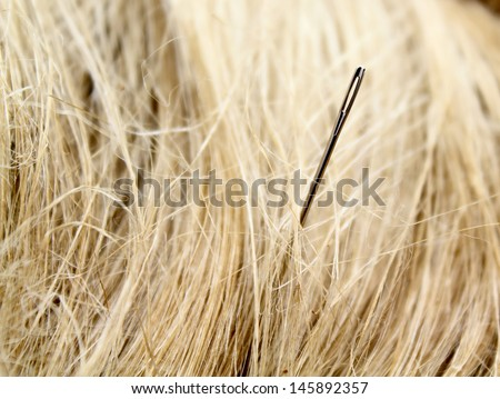 Needle in the middle of a haystack - stock photo