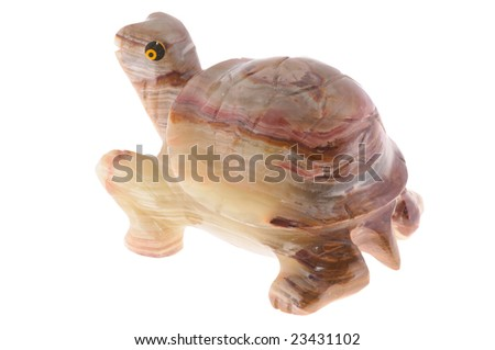 nephrite tortoise, isolated on white background . - stock photo