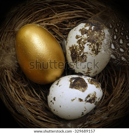 Nest Egg, a golden egg inside a nest with two other eggs closeup - stock photo