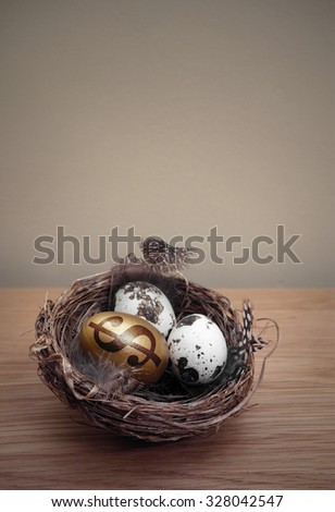 Nest Egg, a golden egg with a dollar symbol printed onto it inside a nest on a wooden table with a wall as background copy space - stock photo