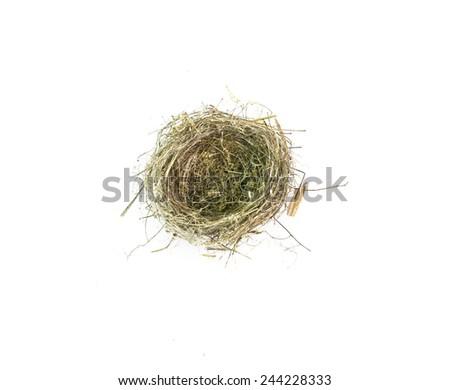 nest empty isolated - stock photo