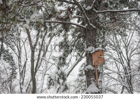 Nesting box under snow during the winter - stock photo