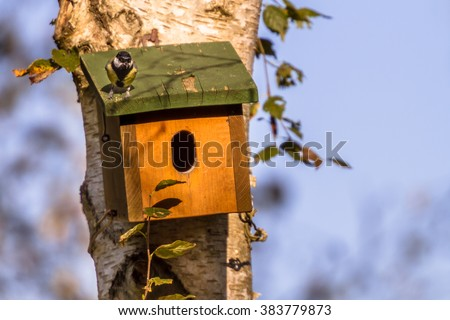 Nesting box with bird on top of roof to inspect its new house - stock photo