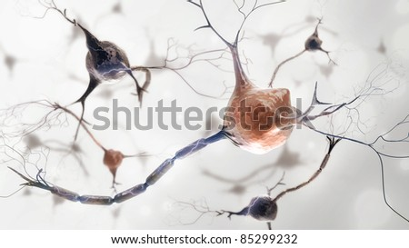 neurons and nervous system. 3d render of organic nerve cells - stock photo