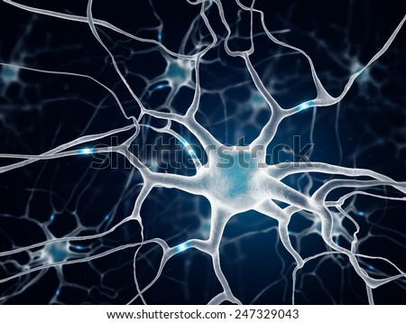 Neurons In The Brain. Multipolar neuron on blue background. - stock photo
