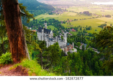 Neuschwanstein from top view and the tree  - stock photo