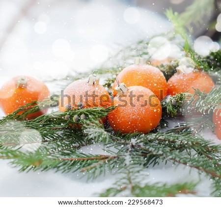 New Card with Tangerines Decorated as Fir-tree Toys.  Branch of Coniferous on White Snow - stock photo