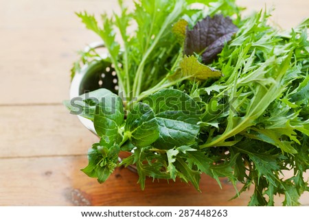 New crop fresh organic mix salad leaves with mizuna, lettuce, pakchoi, tatsoi, kale, spinach and leaf mustard - stock photo