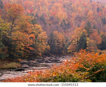 New England Autumn Fog - stock photo