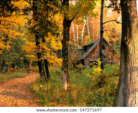 New England Cabin in Autumn - stock photo