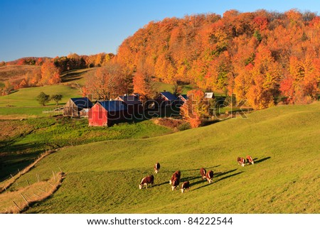 New England Fall Colors - stock photo