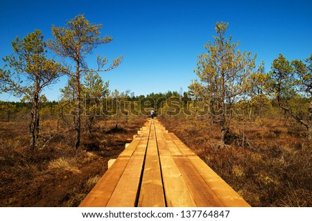 New footpath on the bog - stock photo