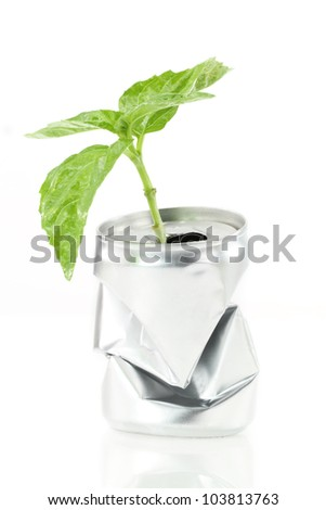 New life. Aluminum can with growing green plant - stock photo