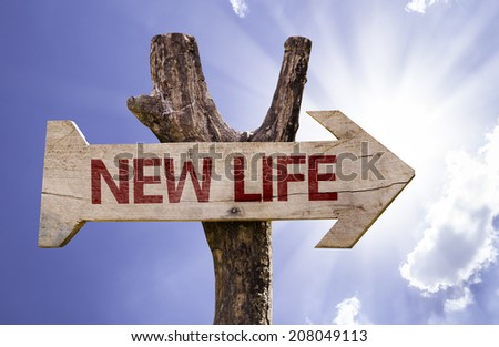 New Life wooden sign on a beautiful day - stock photo