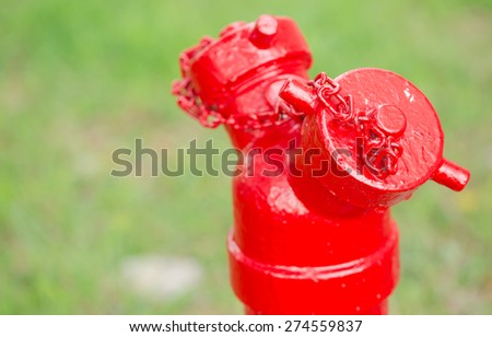 New painted red hydrant on green yard background - stock photo