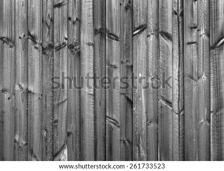 New wood fence in treated pine panels in black and white - stock photo