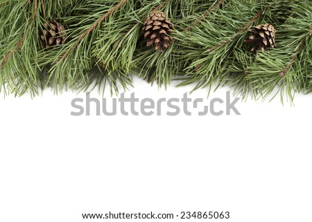 New Year background. Christmas fir branches and bumps on a white background with copyspace - stock photo