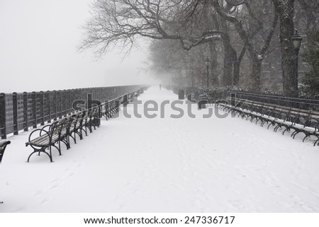 NEW YORK CITY - JANUARY 26 2015: Brooklyn Heights residents gird themselves in preparation for winter storm, Juno, the first major blizzard of 2015. Brooklyn Heights promenade - stock photo