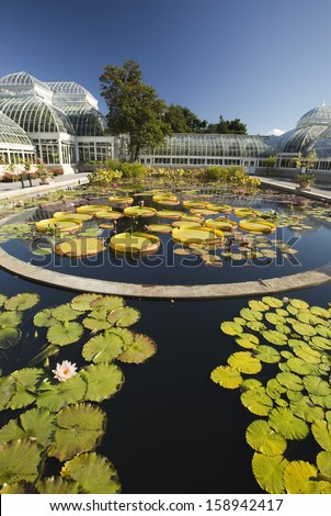 New York - September 28, 2013: On the grounds at the New York Botanical Garden in New York. Waterlily Pond and Greenhouse - stock photo