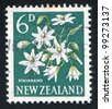 NEW ZEALAND - CIRCA 1960: stamp printed by New Zealand, shows Clematis, circa 1960 - stock photo